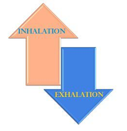 Inhalation_Vs_exhalation_content