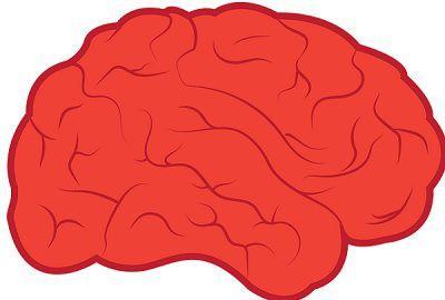 content_image_nervous_vs_endocrine