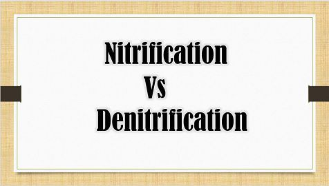 Nitrification_Vs_Denitirification_content_img